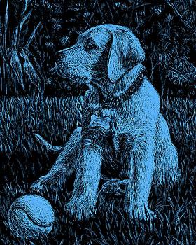 Blue Labrador Puppy Dog by Irina Sztukowski