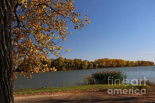 Blue Lake in Fall by Yumi Johnson