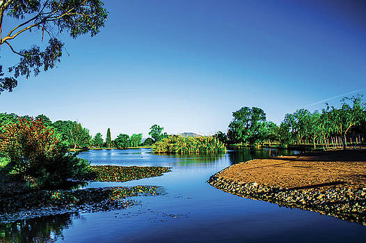 Blue Lake  by Naomi Burgess