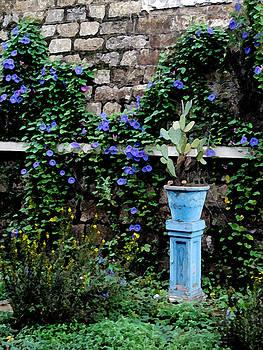 Blue Margherita by Paul Barlo