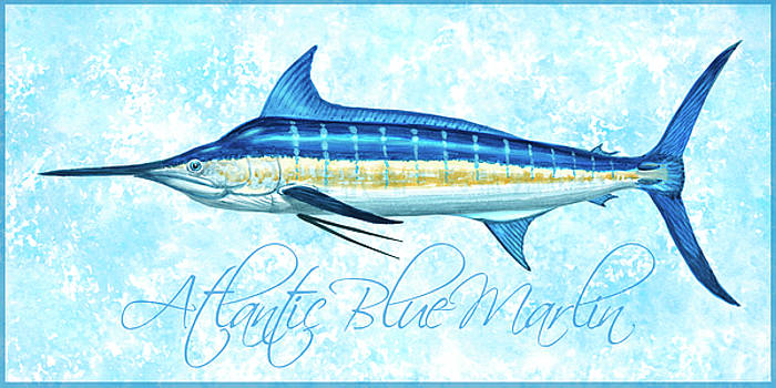 Blue Marlin - Blue Sponge with Border by Guy Crittenden