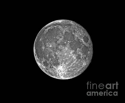 Blue Moon 07/31/2015 by Frank Larkin