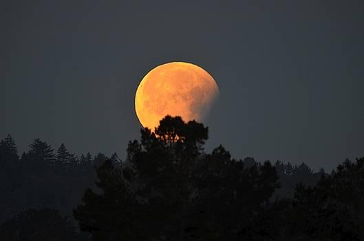 Blue Moon by Alex King
