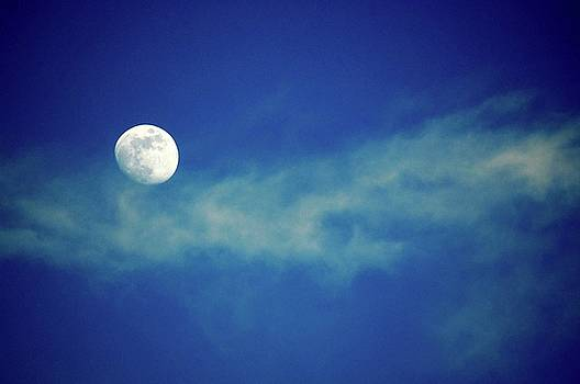 Blue Moon by Matthew Hall
