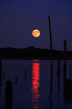 Raymond Salani III - Blue Moon
