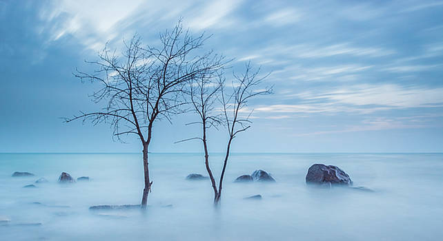 Blue Morning by Dave Chandre