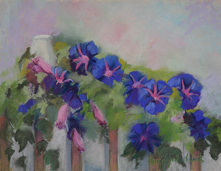 Blue Morning Glories  by Cheryl Yellowhawk