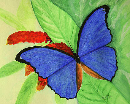 Blue Morpho 1 by M Gilroy