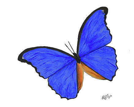 Blue Morpho 2 by M Gilroy