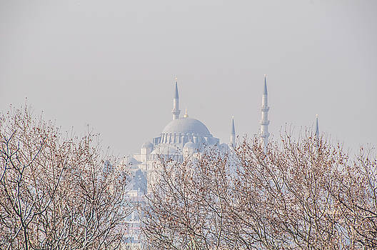 Blue Mosque by Subroto Mukherjee