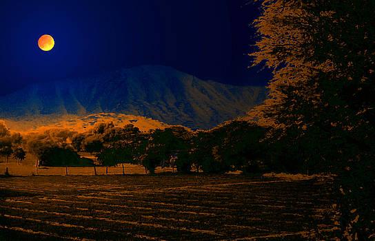 Bliss Of Art - Blue mountain