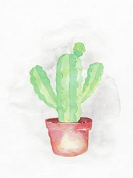 Blue Myrtle Cactus by Armando Elizondo