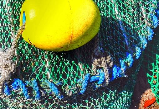 Blue Net with Yellow Float by Patricia Greer