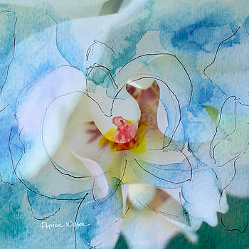 Blue Orchid by Patricia Wilson
