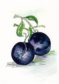 Blue Plums by Melody Allen