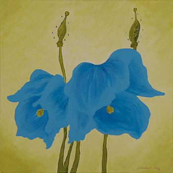 Blue Poppies by Jill Kelsey