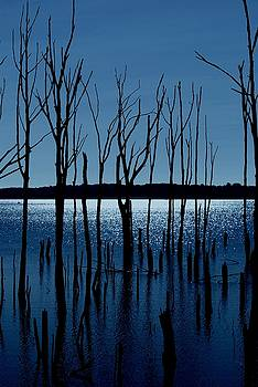 Blue Reservoir - Manasquan Reservoir by Angie Tirado
