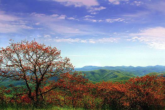 Blue Ridge Blessing by Jessica Brawley