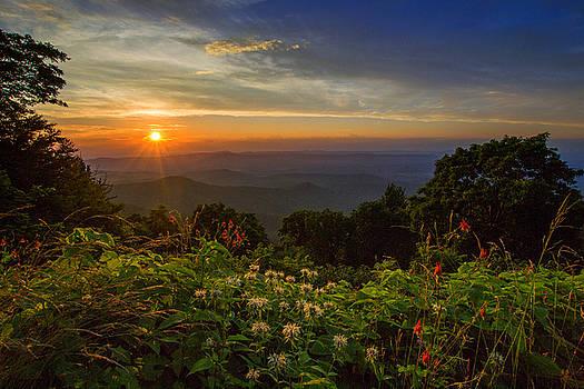 Blue Ridge Brilliance by Steve Hammer