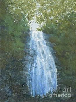Blue Ridge Falls by Phyllis Andrews