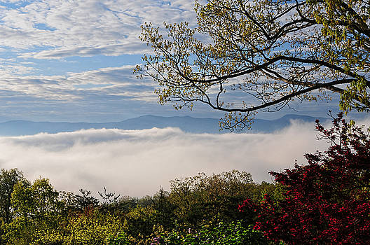 Lara Ellis - Blue Ridge In The Clouds