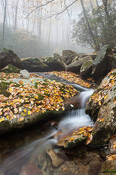 Blue Ridge Mountain Autumn Cascade by Mark VanDyke