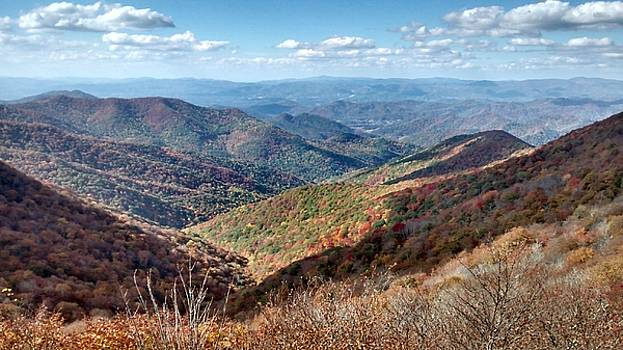 Patricia Taylor - Blue Ridge Mountain High
