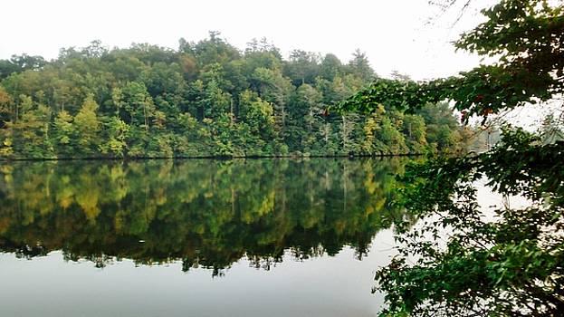 Patricia Taylor - Blue Ridge Mountain Lake