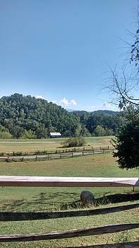 Patricia Taylor - Blue Ridge Mountain Landscape
