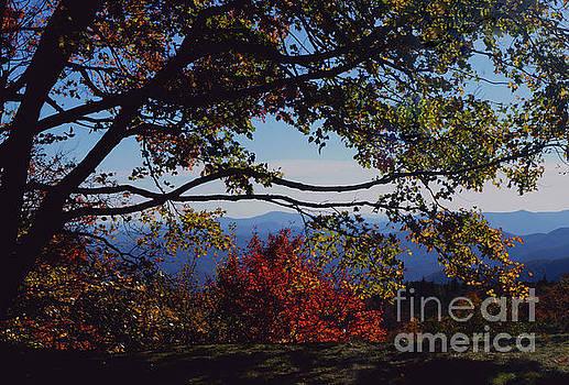 Blue Ridge Mountain View by Debra Crank