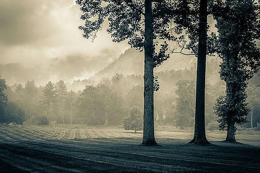 Blue Ridge Mountains NC Monochrome Morning by Robert Stephens