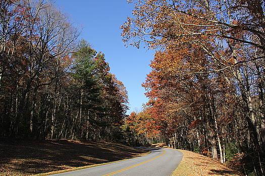 Allen Nice-Webb - Blue Ridge Parkway