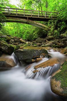 Blue Ridge Parkway - Boone Fork Trail by Jason Penland