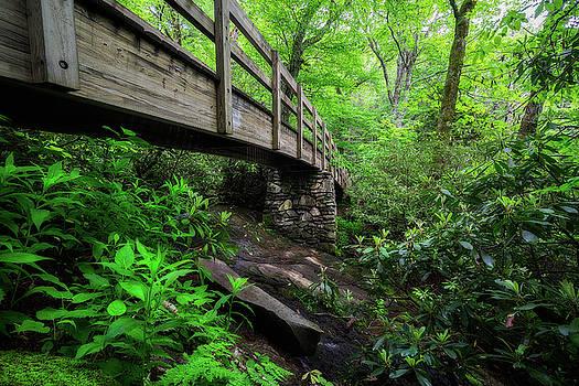 Blue Ridge Parkway - Crossings  by Jason Penland