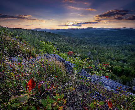 Blue Ridge Parkway - Hint of Autumn  by Jason Penland