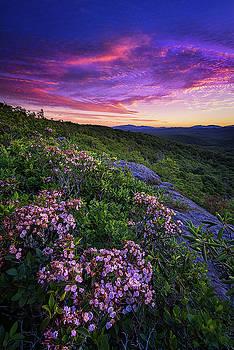 Blue Ridge Parkway - Purple Enchantment by Jason Penland