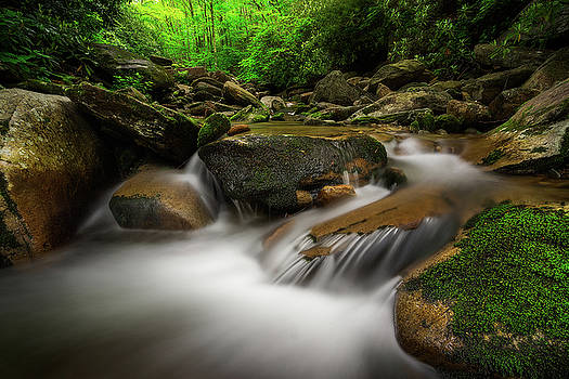Blue Ridge Parkway - Tanawha Trail by Jason Penland
