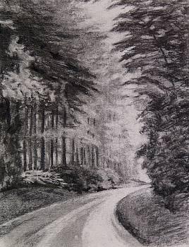 Blue Ridge Road by Regina Calton Burchett