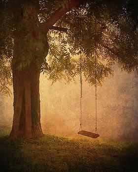 Blue Ridge Swing by William Schmid