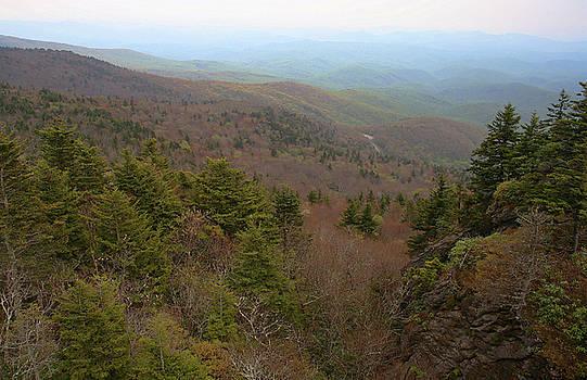 Karol Livote - Blue Ridge View