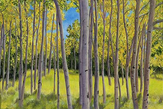 Blue Skies and Birch by Deborah Butts