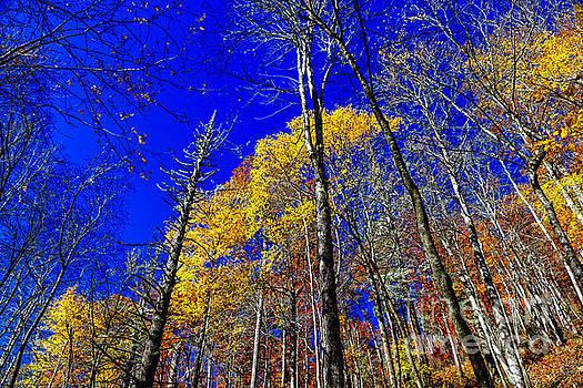 Paul Mashburn - Blue Sky In Fall