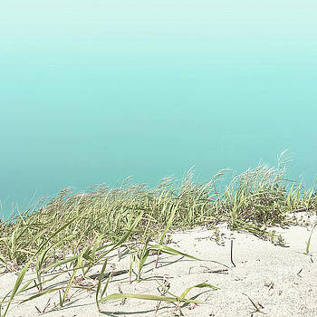 Blue sky over sea grass by Cindy Garber Iverson
