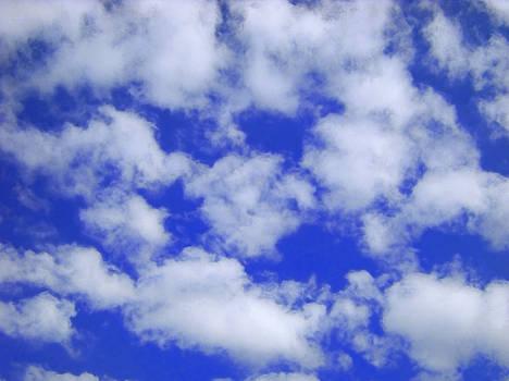 Blue sky sheeps by Neven Spirkoski