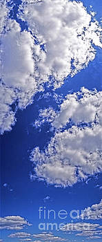 Blue Sky With Clouds Vertical  by Tom Jelen