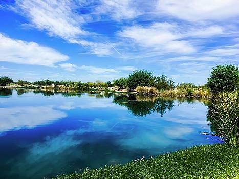 Blue Skys by Jen Lynn Arnold