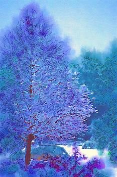DONNA BENTLEY - Blue Snow Scene
