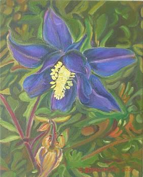Blue Star by Ewald Smykomsky
