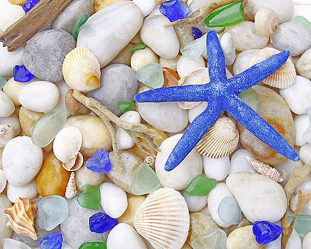 Blue Starfish by Kelly S Andrews