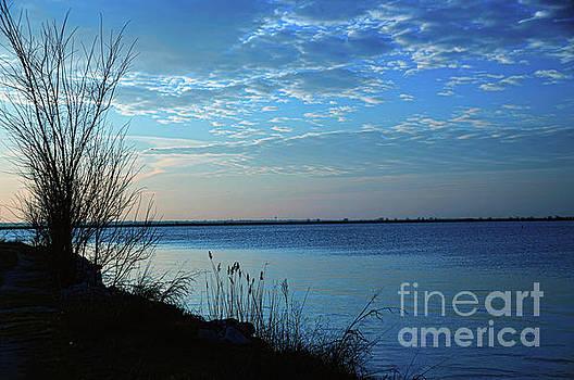 Blue Sunrise at Sea by Diana Mary Sharpton